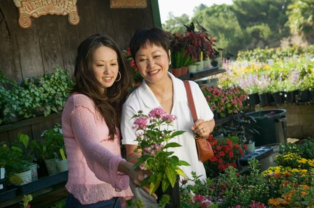 decisionmaking: Family Shopping for Plants