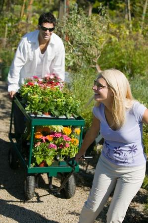 carretilla de mano: Par compras para plantas  LANG_EVOIMAGES