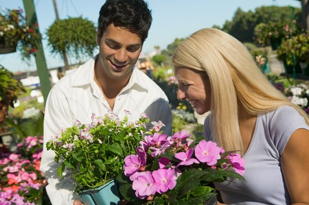 decisionmaking: Couple Shopping for Plants