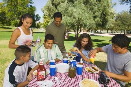 Familie versammelte sich um Picknick Tisch Stockfoto - 5412270