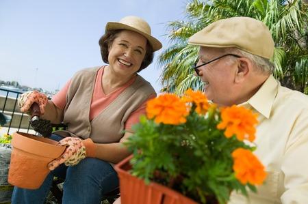 Senior Gardeners Stock Photo - 5435824