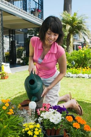 Woman Watering Garden Stock Photo - 5435837