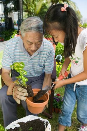 asian gardening: Grandfather and Granddaughter Gardening