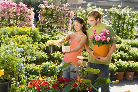 seres vivos: Par compras juntos para plantas  LANG_EVOIMAGES