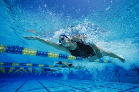 nadador: Swimmers Racing in Pool