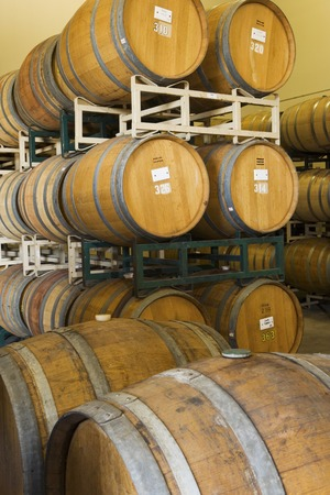 Wine Casks in rows and stacks Stock Photo - 5438021