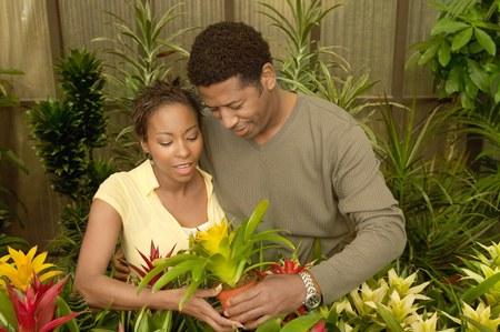 Couple Choosing Plants at a Nursery Stock Photo - 5438101