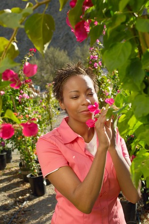 Woman Smelling a Flower at a Nursery Stock Photo - 5438102