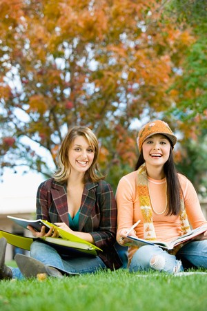 higher learning: Students Studying Together Outside