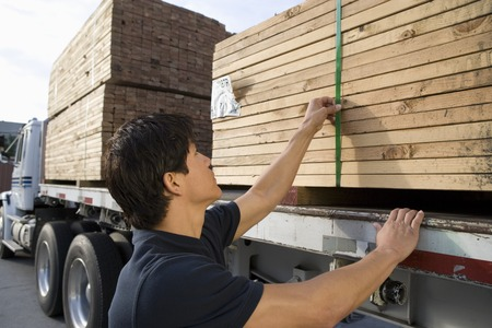 Mid-adult man checking truck loaded with wood Stock Photo - 5449536