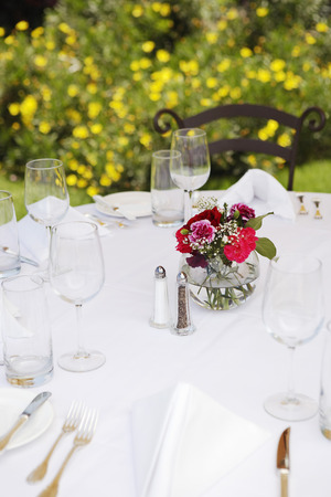 lawn party: Dining Table Set Outside