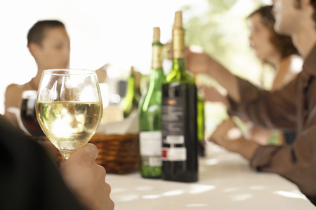 mingle: Friends Having Dinner Party