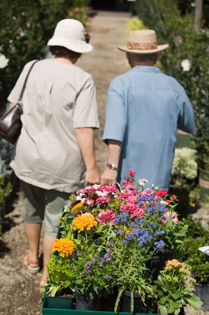Senior Couple walking in plant nursery pulling cart of flowers back view Stock Photo - 8822567