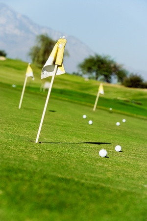 Golf course green with flags and balls Stock Photo - 8836498