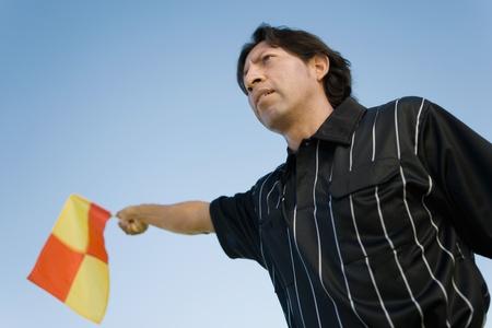 linesman: Soccer linesman waving flag portrait