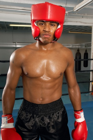 protector: Boxer in head protector and gloves in gym LANG_EVOIMAGES