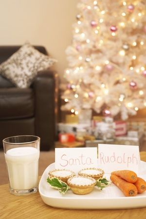 Food for Santa and Rudolph near Christmas tree in home Stock Photo - 8844634