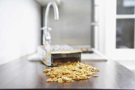 Spilled cereal on kitchen counter Stock Photo - 8844672