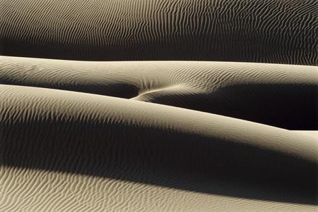Balayées par le vent des dunes de sable Banque d'images