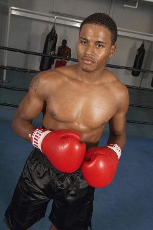 pugilist: Boxeador