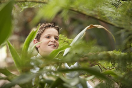 Boy Looking at Plants Stock Photo - 12514216