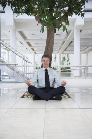 Businessman meditating under tree Stock Photo - 12547799