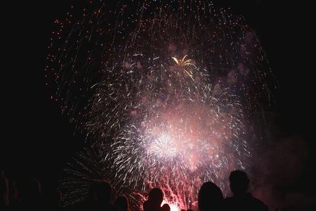 guy fawkes night: Ombre di spettatori davanti a fuochi d'artificio
