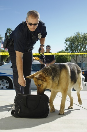 policier: Des chiens de police Sniffing Sac