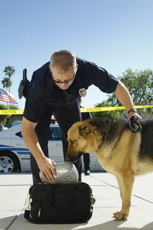 enforcing the law: Police Dog Sniffing Bag LANG_EVOIMAGES