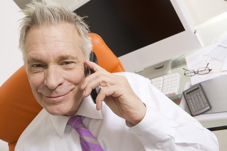 business roles: Businessman Using Cell Phone