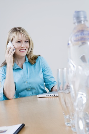 Businesswoman Using Cell Phone Stock Photo - 12547737