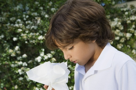 hayfever: Little Boy with a Cold