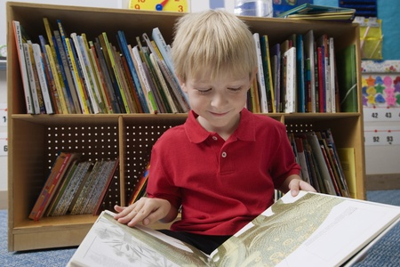 6 year old children: Little Boy Reading a Picture Book