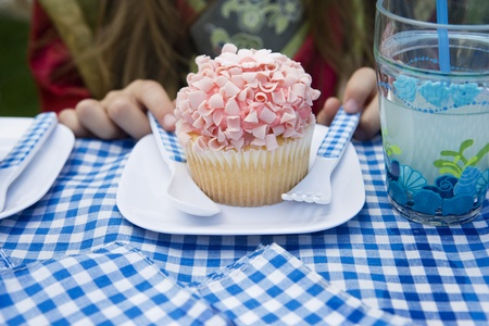 Cupcake on Plate Stock Photo - 12592860