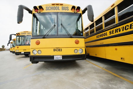 School Busses Parked in Lot Stock Photo - 12592919