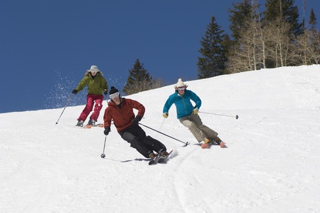 ski area: Skiers Skiing Down Slope LANG_EVOIMAGES