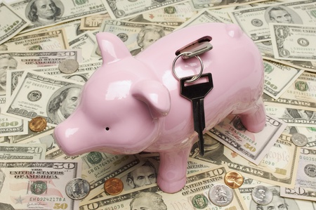 Piggy Bank on Money Stock Photo - 12737098