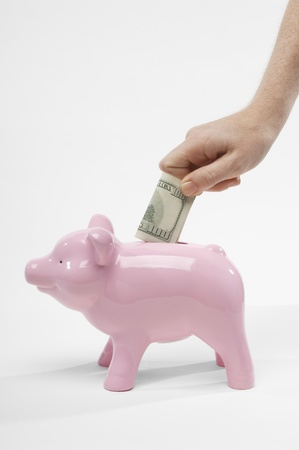 Hand Putting Money in Piggy Bank Stock Photo - 12737180