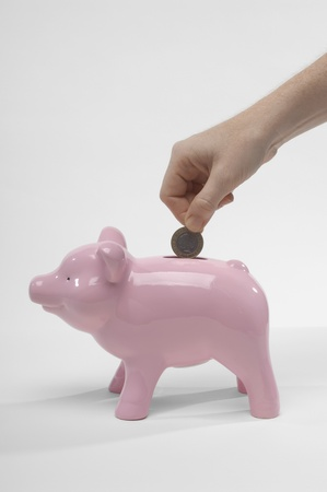 Hand Putting Money in Piggy Bank Stock Photo - 12737182