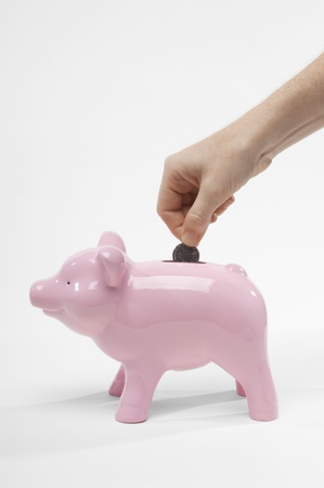 Hand Putting Money in Piggy Bank Stock Photo - 12737183