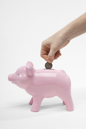Hand Putting Money in Piggy Bank Stock Photo - 12737184