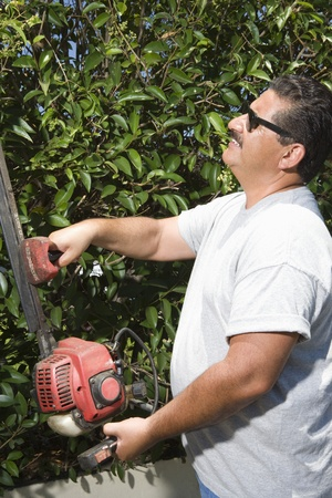 middle easterners: Man cutting garden hedge