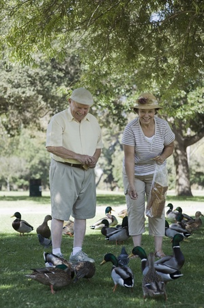 the ageing process: Senior couple feeding ducks