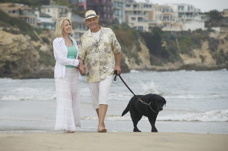 Senior couple walk dog on beach Stock Photo - 12735413