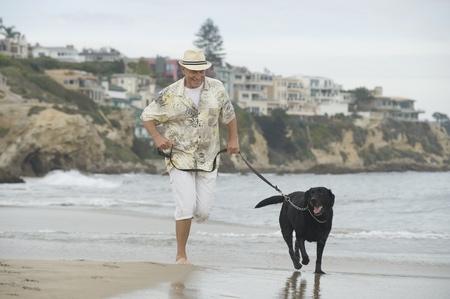 Senior man exercising dog on beach Stock Photo - 12735403