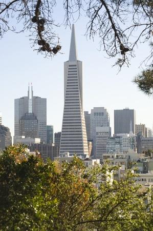 Transamerica Pyramid San Francisco California Stock Photo - 12735264