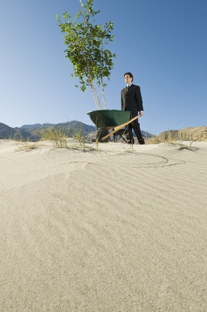 Businessman Pushing Wheelbarrow and Tree in the Desert Stock Photo - 12735188