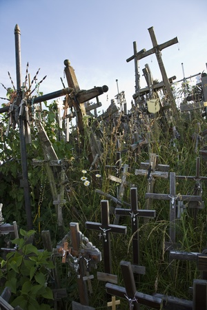 Lithuanian graveyard with wooden crosses Stock Photo - 12738240