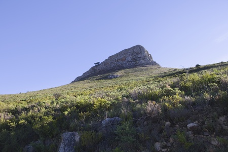 Lions Head Mountain sister peak to Table Mountain South Africa Stock Photo - 12738244