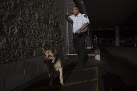 guard dog: Security guard in alleyway pursuit with guard dog